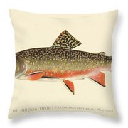 Denton Brook Trout Throw Pillow by Gary Grayson