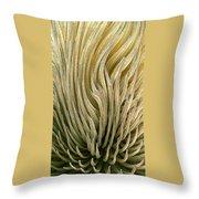Desert Green Throw Pillow by Ben and Raisa Gertsberg
