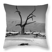 Desolation Row Throw Pillow by Aidan Moran
