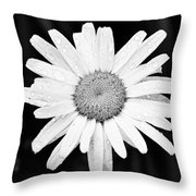 Dew Drop Daisy Throw Pillow by Adam Romanowicz