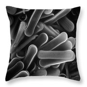 Diatom Sem 2800x Throw Pillow by Albert Lleal