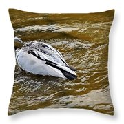 Diving Duck Throw Pillow by Kaye Menner