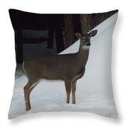 Doe A Deer Throw Pillow by Brenda Brown