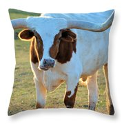 Don't Mess With Me Throw Pillow by Jan Amiss Photography
