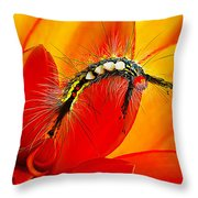 Don't Touch Throw Pillow by Bill Caldwell -        ABeautifulSky Photography