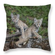 Double Trouble Throw Pillow by Sandra Bronstein