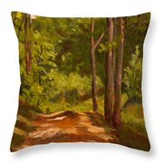 Down The Road Throw Pillow by Janet Felts