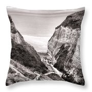 Down To The Sea Throw Pillow by Olivier Le Queinec