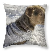Dressed For The Snow Throw Pillow by Jason Politte