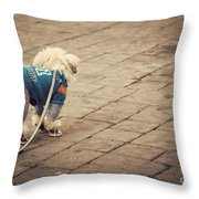 Dressed Up Dog Throw Pillow by Juli Scalzi
