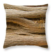 Driftwood 1 Throw Pillow by Adam Romanowicz