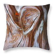 Driftwood 6 Throw Pillow by Bill Caldwell -        ABeautifulSky Photography