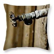 Drip...drip...drip...drip Throw Pillow by Trish Tritz