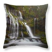 Dripping Wet Throw Pillow by Darren  White