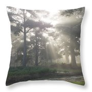 Driveway To Paradise  Throw Pillow by Mike McGlothlen