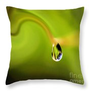 Droplet Ready To Drip Throw Pillow by Kaye Menner