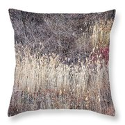 Dry grasses and bare trees in winter forest Throw Pillow by Elena Elisseeva