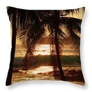 dusk Throw Pillow by Athala Carole Bruckner