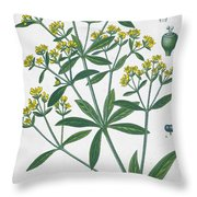Dyers Madder Throw Pillow by French School