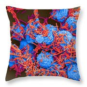 E Coli And Macrophages Sem Throw Pillow by Science Source