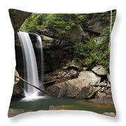 Eagle Falls - D002751 Throw Pillow by Daniel Dempster