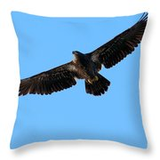 Eagle Wings Throw Pillow by Sharon Talson