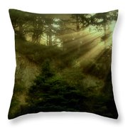 Early Morning Throw Pillow by Katie Wing Vigil