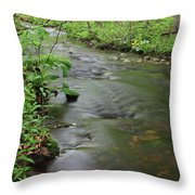 Early Summer at Borden Brook Throw Pillow by Andrew Pacheco