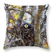 Eggstraordinary Throw Pillow by Al Powell Photography USA