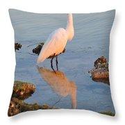 Egret - Dunedin Florida Throw Pillow by Bill Cannon