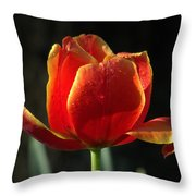Elegance of Spring Throw Pillow by KAREN WILES