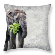 Elephant With A Snack Throw Pillow by Tom Gari Gallery-Three-Photography