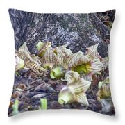 End-of-life V5 Throw Pillow by Douglas Barnard