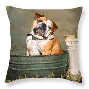 English Bulldog Portrait Throw Pillow by James BO  Insogna