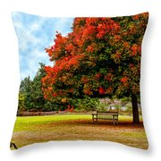 Enjoying Nature Throw Pillow by Camille Lopez