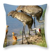 Enjoying The Water Throw Pillow by Zina Stromberg