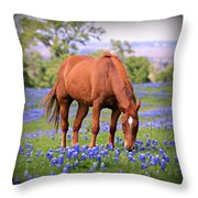 Equine Bluebonnets Throw Pillow by Stephen Stookey