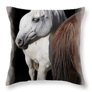Equine Horse Head And Tail Throw Pillow by Daniel Hagerman