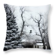 Estherville Barn Throw Pillow by Julie Hamilton