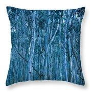 Eucalyptus Forest Throw Pillow by Frank Tschakert