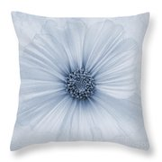 Evanescent Cyanotype Throw Pillow by John Edwards