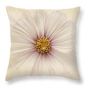 Evanescent Throw Pillow by John Edwards