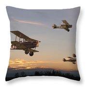 Evening Flight Throw Pillow by Pat Speirs