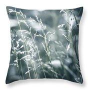 Evening Grass Flowering Throw Pillow by Elena Elisseeva
