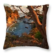 Evening Light At Pfeiffer Burns Throw Pillow by Adam Jewell