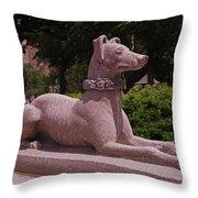 Ever Vigilant Throw Pillow by Rona Black