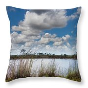 Everglades Lake 6853 Throw Pillow by Rudy Umans