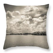 Everglades Lake 6919 Bw Throw Pillow by Rudy Umans