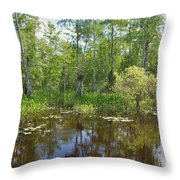 Everglades Lake Throw Pillow by Rudy Umans