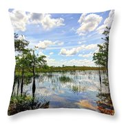 Everglades Landscape 8 Throw Pillow by Rudy Umans